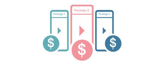 multiple video monetization models