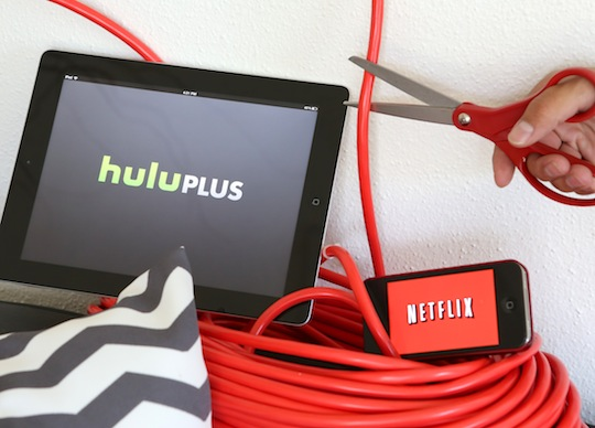 cutting-cable-with-roku-netflix-hulu