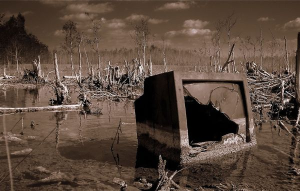 TV is dead? Author says there's something wrong with that picture