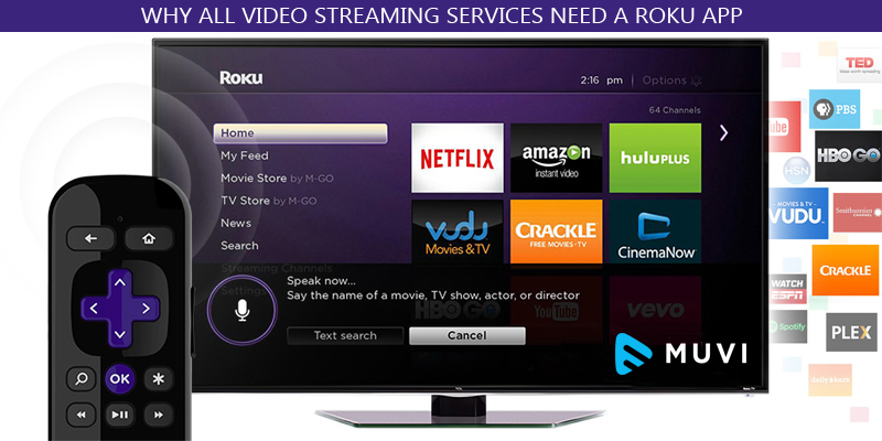 Why All Video Streaming Services Need A Roku App