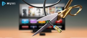 Cord Cutters lean towards Netflix
