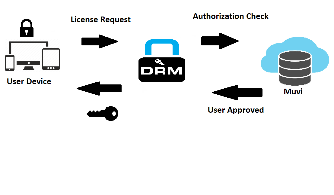 Crack drm protection