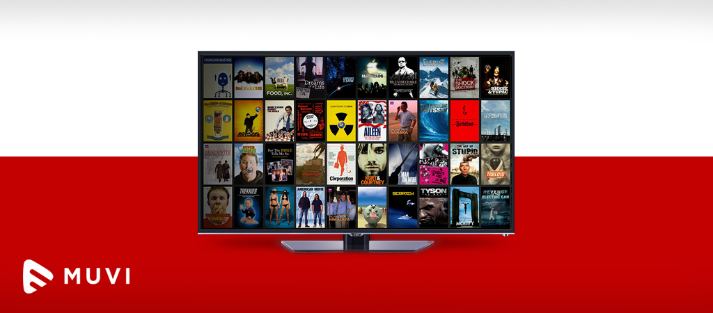 Poland's VOD market has room for new players