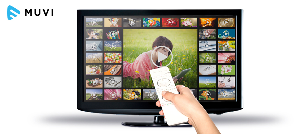 Catch-up TV Revenues at €105m in 2016 in France