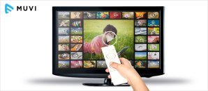 64% of Adults Use an SVOD Service