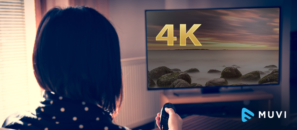 In Leading Regions, 100%  4K Penetration to be achieved by Streaming Media Adapters.