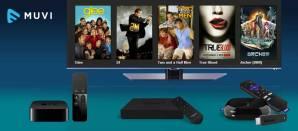 Smart TVs the top way to stream Netflix: Futuresource