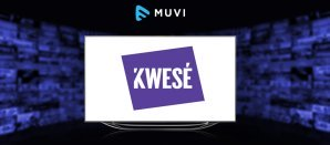 Kwesé introduces Roku box with Netflix