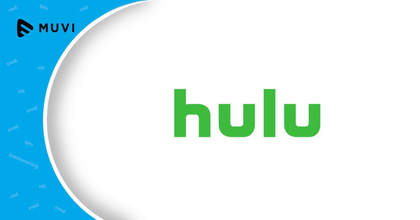 Sony TV ropes in Hulu's CEO