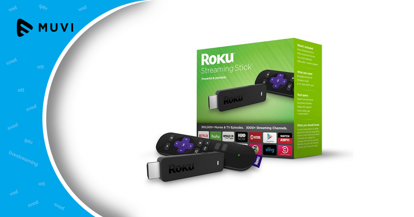 Roku's streaming stick 3600R steals the deal in device market