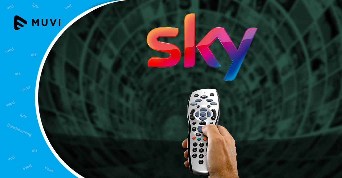 Sky bets on plug-in stick to take on Netflix and Amazon Prime