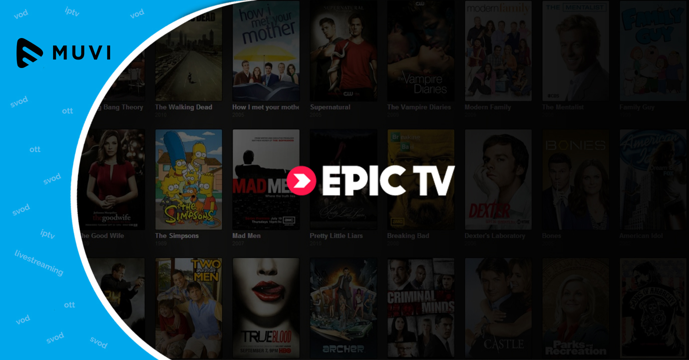 Epic TV zeroes in on distribution networks to widen OTT reach