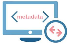 import export metadata content on Muvi