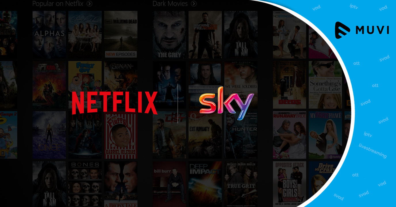 Netflix available on Sky after much speculation