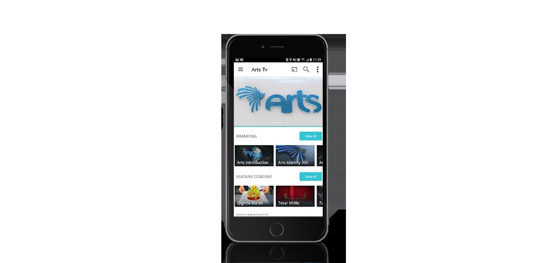 ARTS TV 2
