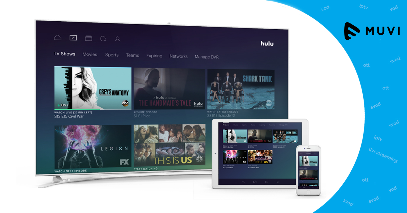 Hulu Records a Total of 28 Million Subscribers in the US