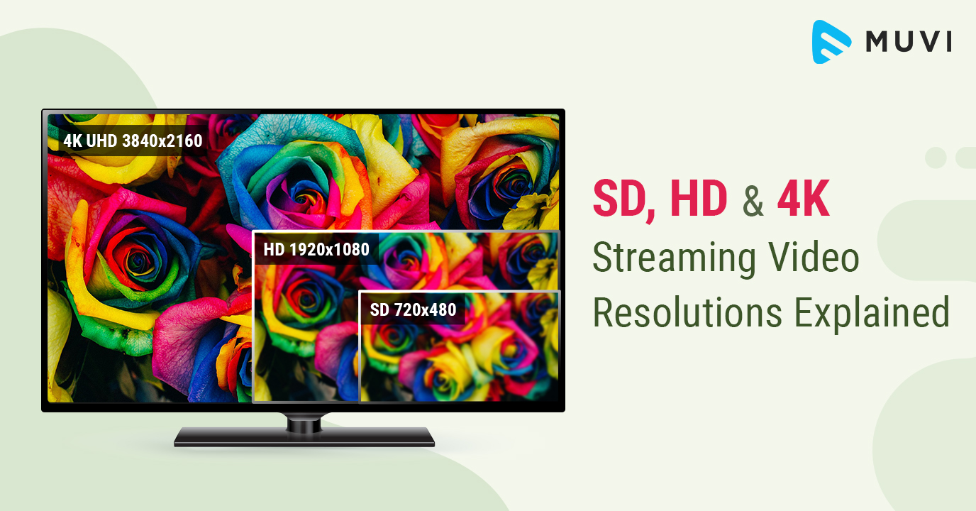 Sd Hd And 4k Streaming Video Resolutions Explained Muvi