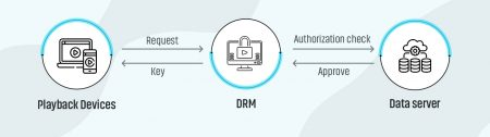 How DRM works?
